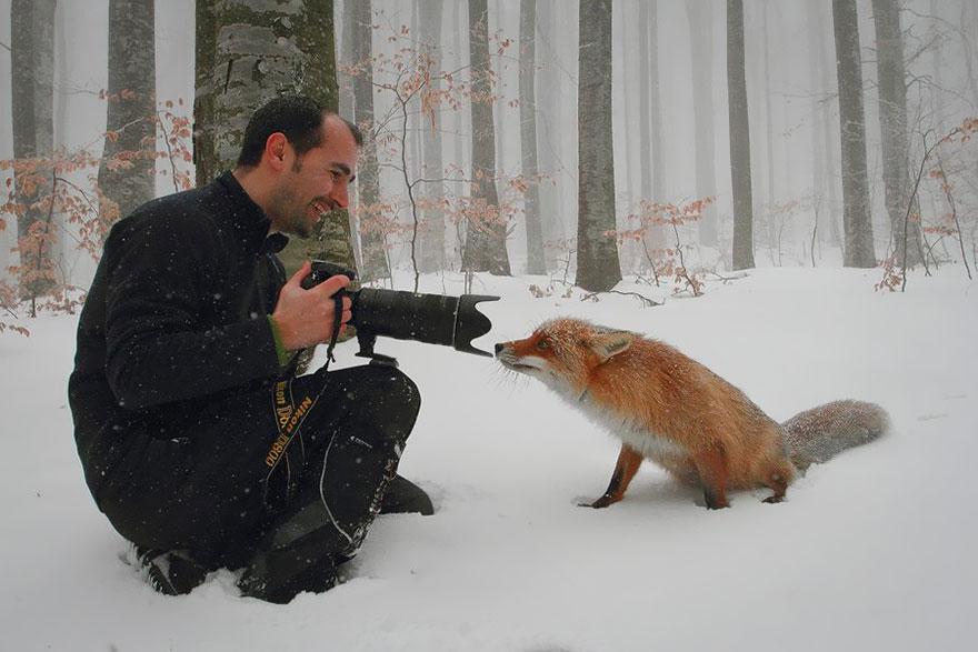 photographe-faune-01